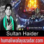https://www.humaliwalyazadar.com/2018/09/sultan-haider-nohay-2019.html