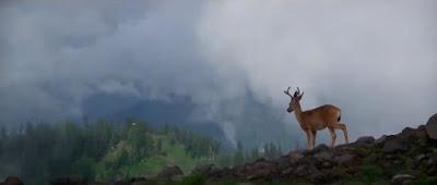 El cazador - The deer hunter - Cine bélico - Periodismo y cine - el fancine - ÁlvaroGP - Content Manager