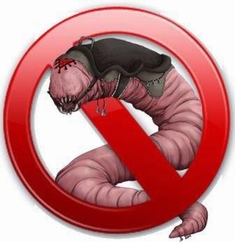 Definisi dan Antisipasi Program Worm.
