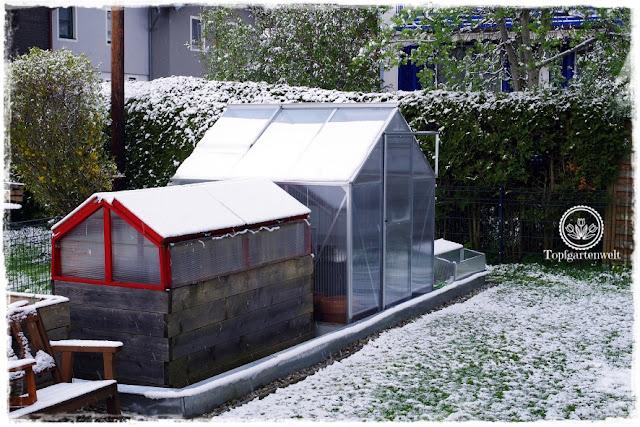 Gartenblog Topfgartenwelt Wintereinbruch im April: Blick auf das Gewächshaus und den Gemüsegarten