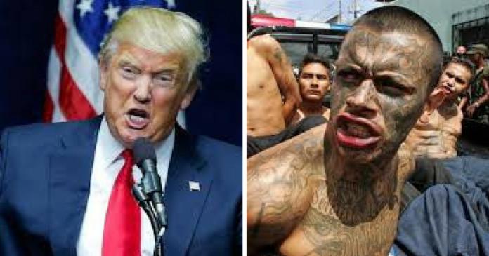 Τραμπ: Αν δεν αλλάξει ο μεταναστευτικός νόμος, ας κλείσει το κράτος