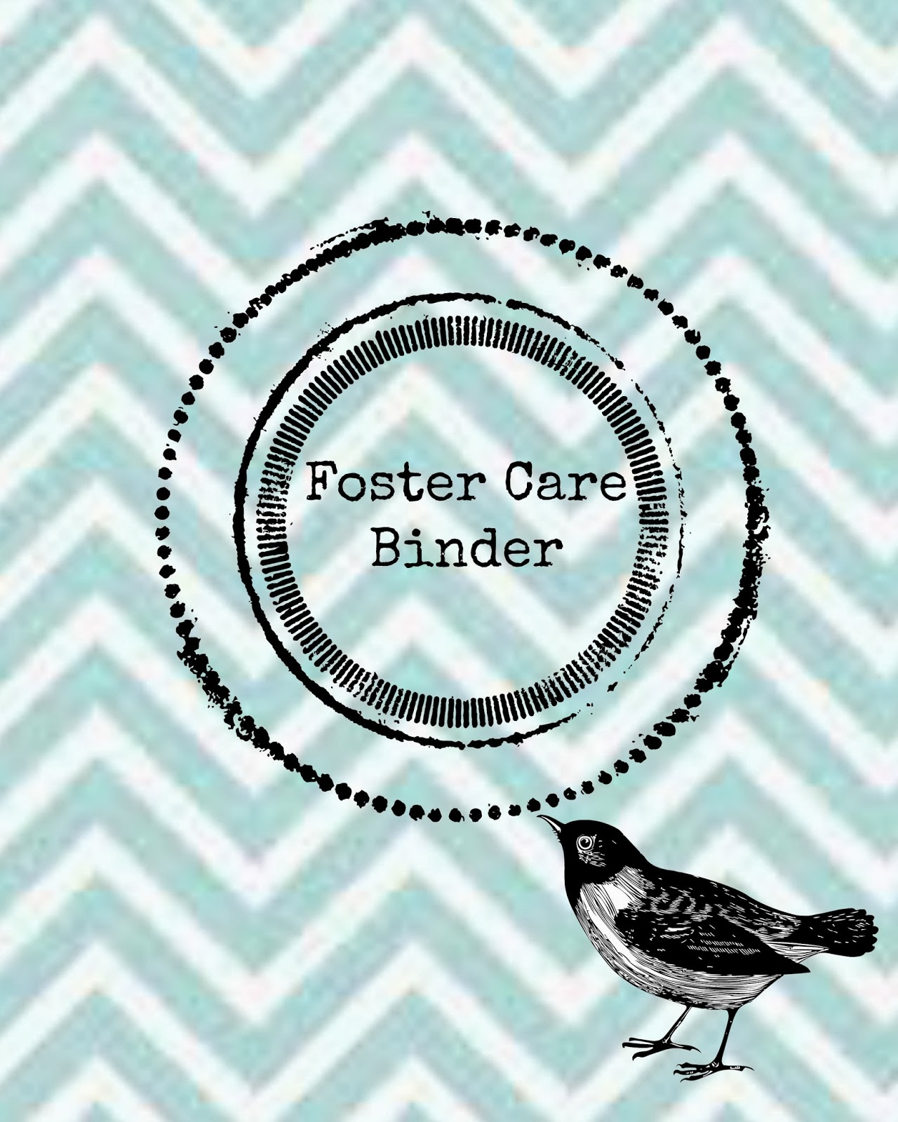 Young Single And Adopting Foster Care Binder