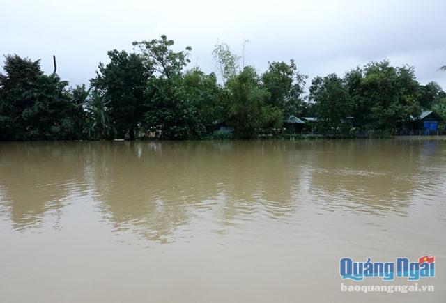 Quảng Ngãi: Lũ trên các sông đã ở mức báo động 3, đề phòng lũ tăng cao đột biến