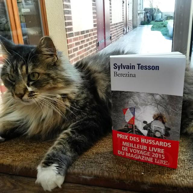Berezina de Sylvain Tesson : la retraite de Russie en side-car
