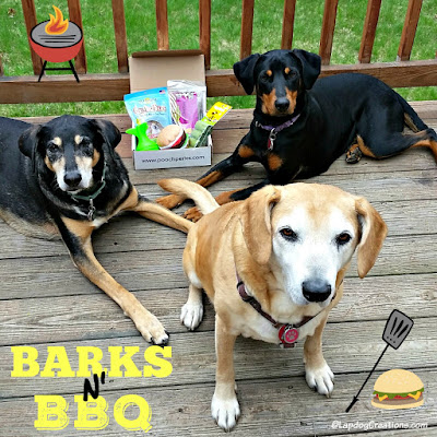 3 rescue dogs with Pooch Perks subscription box BBQ