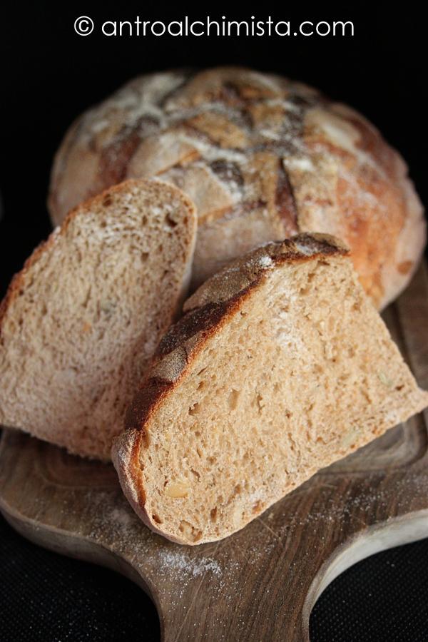 Pane di Segale e Trigonella