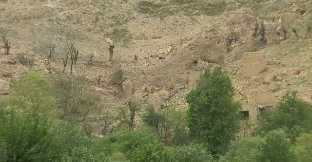 আফগানিস্তানে দুই মার্কিন সেনা নিহত