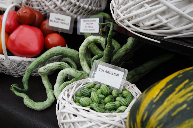 tomatoes and cucamelons in white wicker baskets