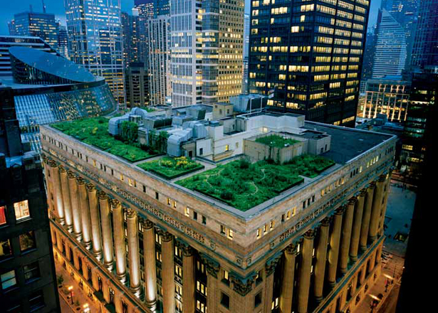 Green Roofing, New York.