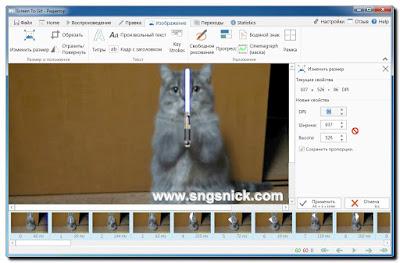 ScreenToGif 2.7.3 - Окно Изменить размер