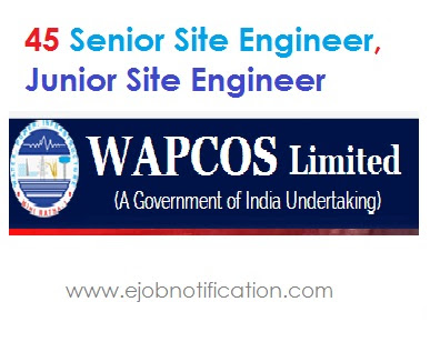 WAPCOS haryana 45 Site Engineer Notification 2017 @wapcos.gov.in