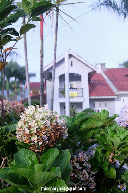 villa di sekitar taman bunag nusantara