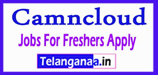 Camncloud Recruitment 2017 Jobs For Freshers Apply