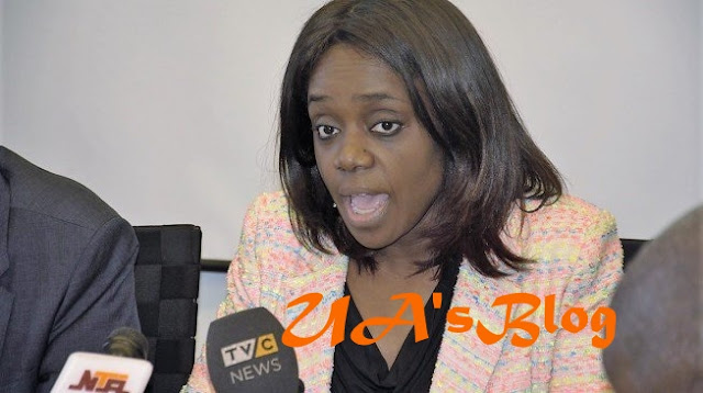 'We don't have to act only after officials have been handcuffed' — Adeosun defends Gwarzo's suspension