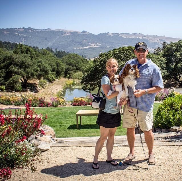 Blenheim Cavalier King Charles Spaniels at beautiful Sonoma, California vineyard
