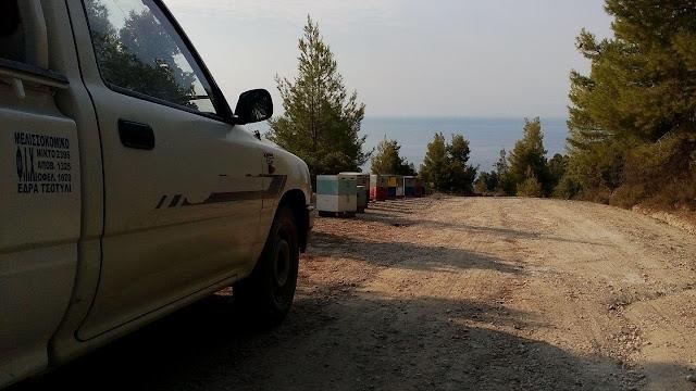 Κλοπή μελισσοκομικού αυτοκηνήτου στους Αμπελοκήπους