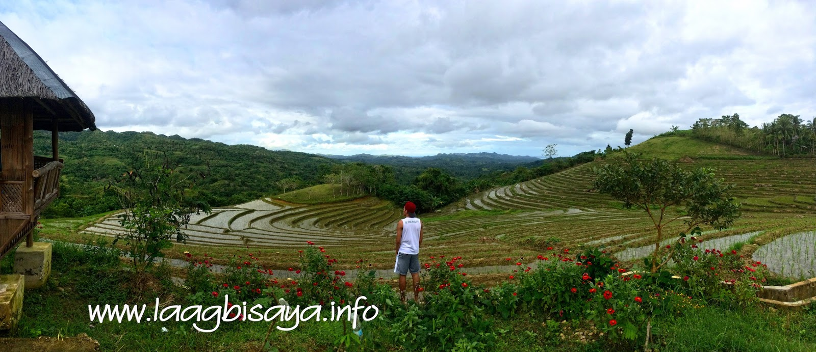 Candijay's Rice Terraces