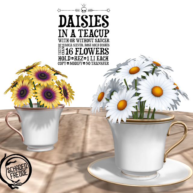 Schadenfreude Daisies and Ranunculus in Teacups