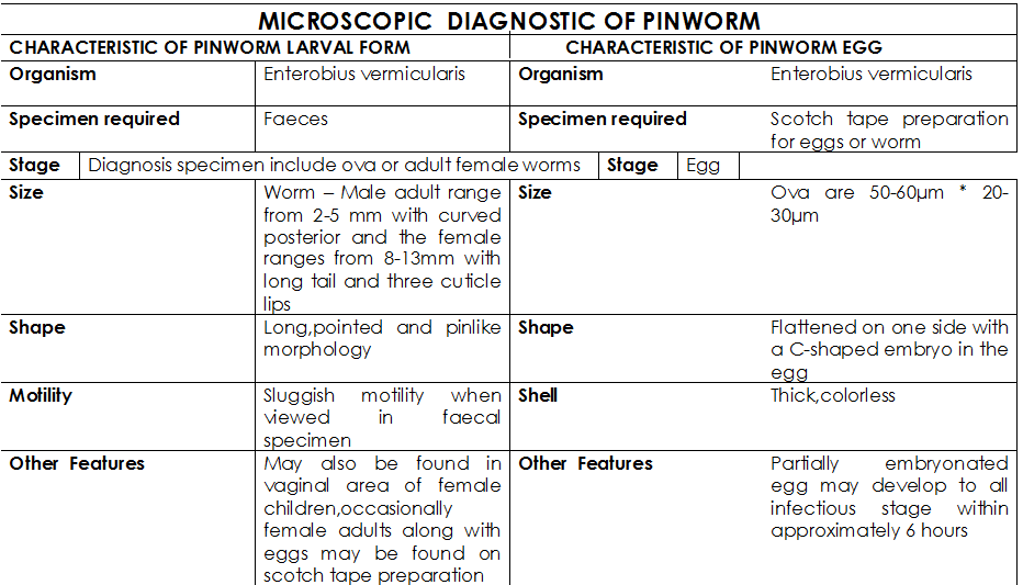 Enterobius vermicularis diagnosis, Pinworms de giardia pinworm, Diagnosis b80 enterobiasis