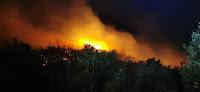 Požar kod Bobovišća na moru slike otok Brač Online