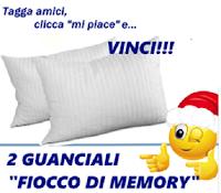 Logo Vinci gratis una coppia di Guanciali Fiocco di Memory