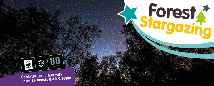 Our guide to Stargazing Events for kids in North East England 2017 | Stargazing during WWF's Earth Hour 25th March 8:30pm