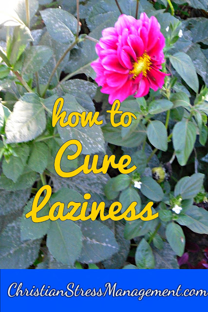 How to cure laziness