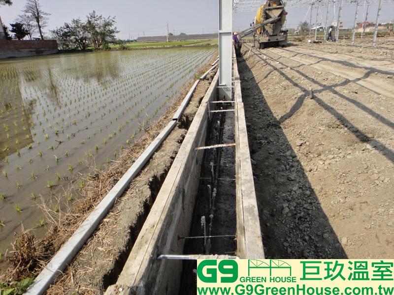 9.圓鋸鋼骨加強型溫室結構,擋土牆灌3000磅混泥土施工外觀