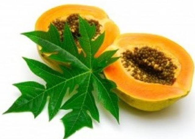 Obat Herbal Maag Kronis Alami