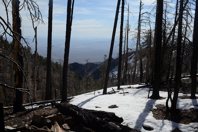 burned ridge from burned forest