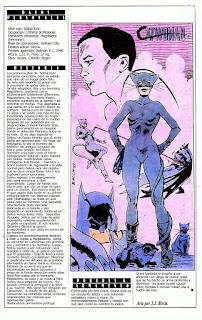 Catwoman Superheroe