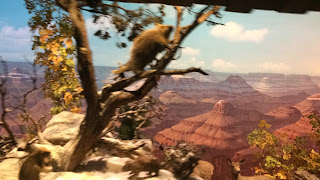 Grand Canyon Diorama Disneyland