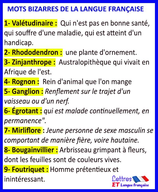 Mots bizarres de la langue française