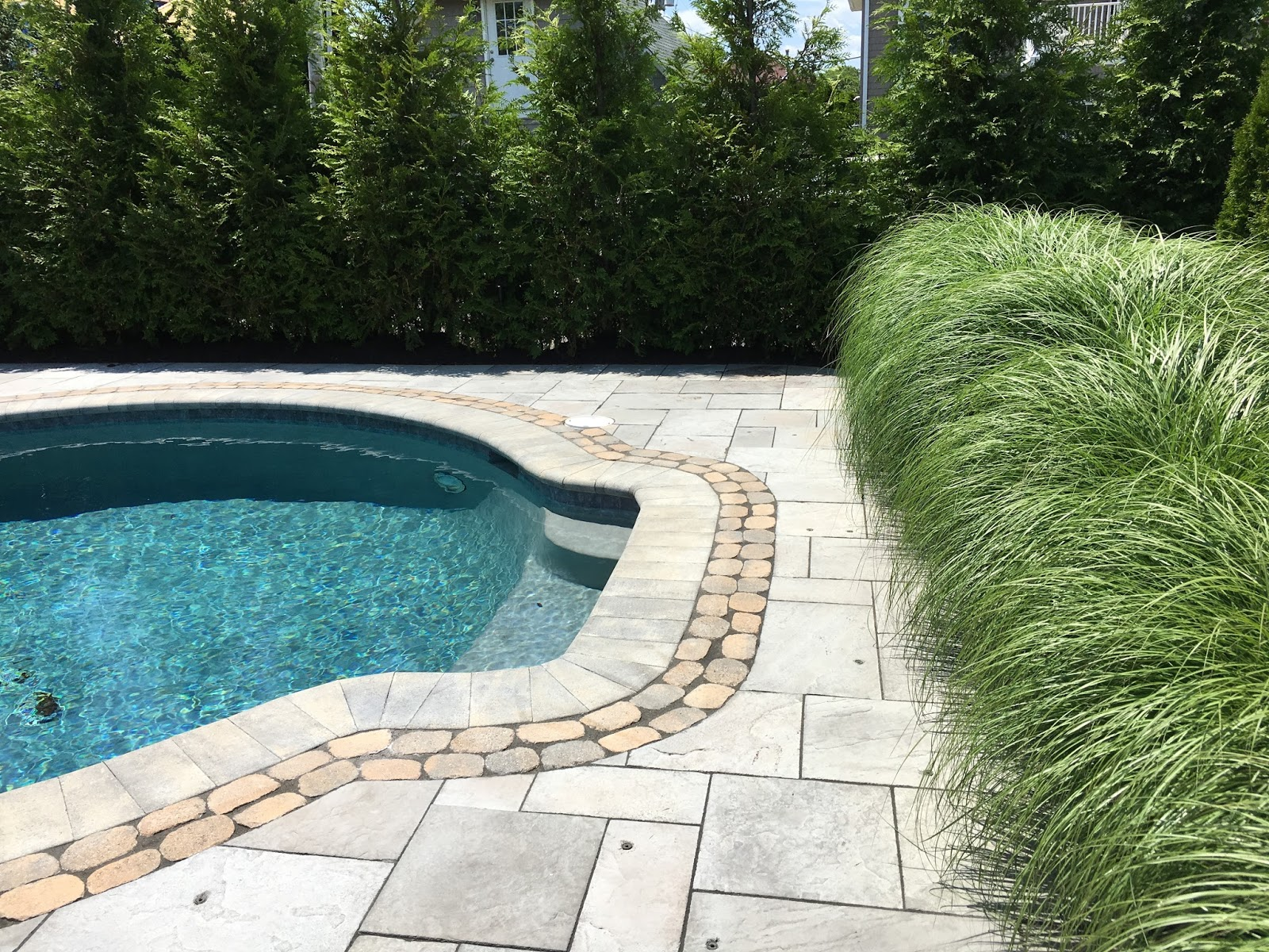 Swimming pool and tall grasses on garden tour