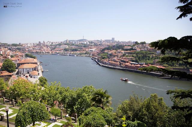 portugal, porto, palacio do cristal, jardin, parc