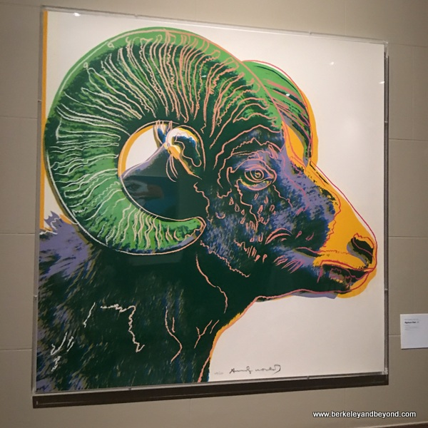 Andy Warhol's big horn sheep at The Briscoe Western Art Museum in San Antonio, Texas