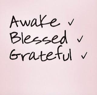 be grateful, gratidão, um pinguinho, livia domingos, entre nós, crônica, pensamentos, desabafos