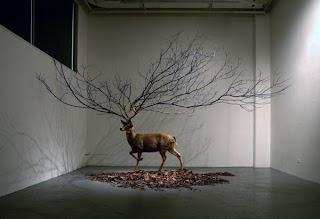 Obras de arte en armonía con la naturaleza.