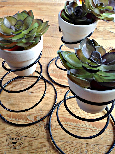 rusty springs with succulents