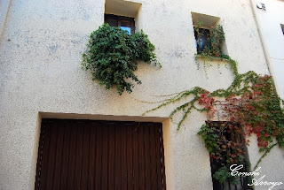 Llamativa casa del casco antiguo de Buñol por su fachada decorada con plantas