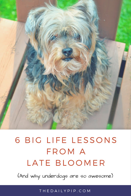 Six life lessons from a late bloomer and why underdogs are awesome!