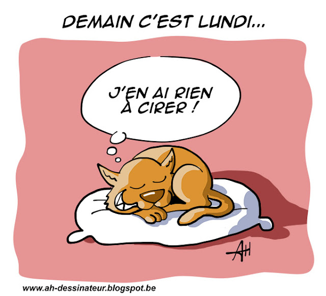 Dessin, chat