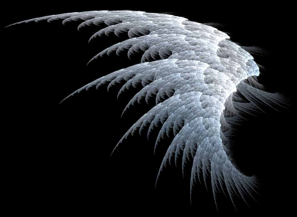 HQ Wallpapers: Angel Wings Wallpapers