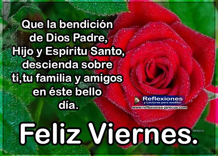 Feliz viernes, que la bendición de dios Padre, hijo y Espíritu Santo, descienda sobre ti, tu familia y amigos en éste bello día.