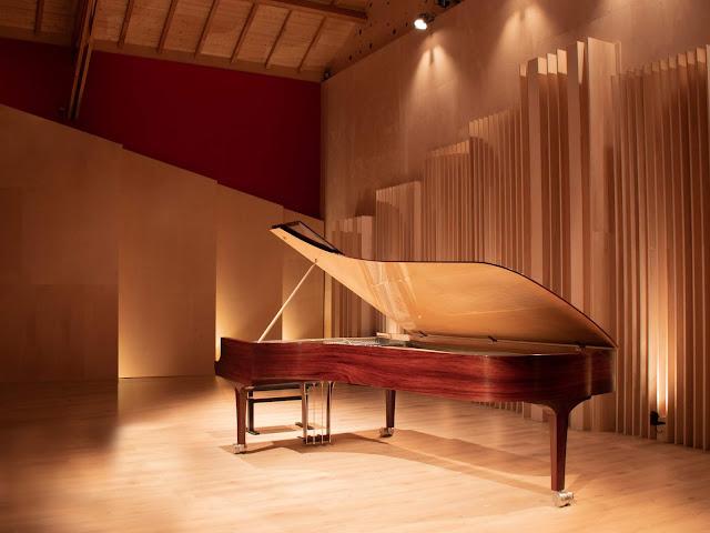 KLinger Favre Acoustique Piano Pauello Opus102