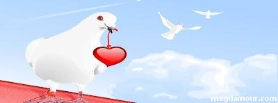 19photos couverture facebook pour les amoureux