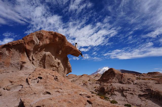 Red Planet Tour Uyuni Bolivia salt flats salar de uyuni chiguana lava rock formation volcano