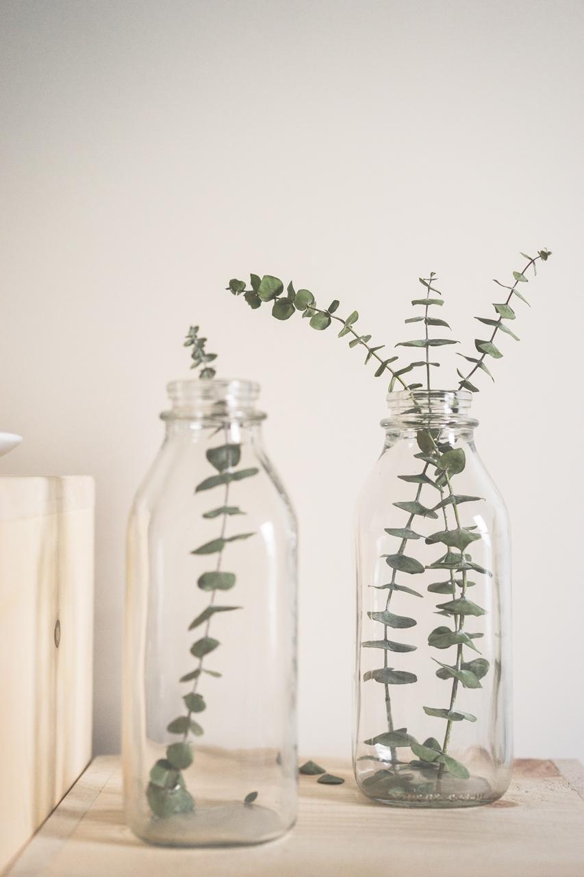Mgiełki nawilżające | Benton Honest TT Mist, WHAMISA Organic Flowers Olive Leaf Mist