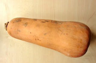 photo courge butternut