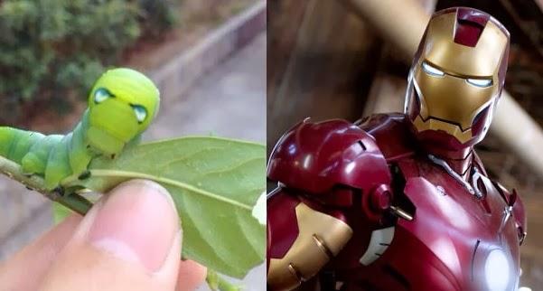 Lucu Ulat ini Bertampang Lebih Seram Dari Iron Man